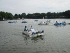 Das Tretbootrennen am Aasee war ein voller Erfolg